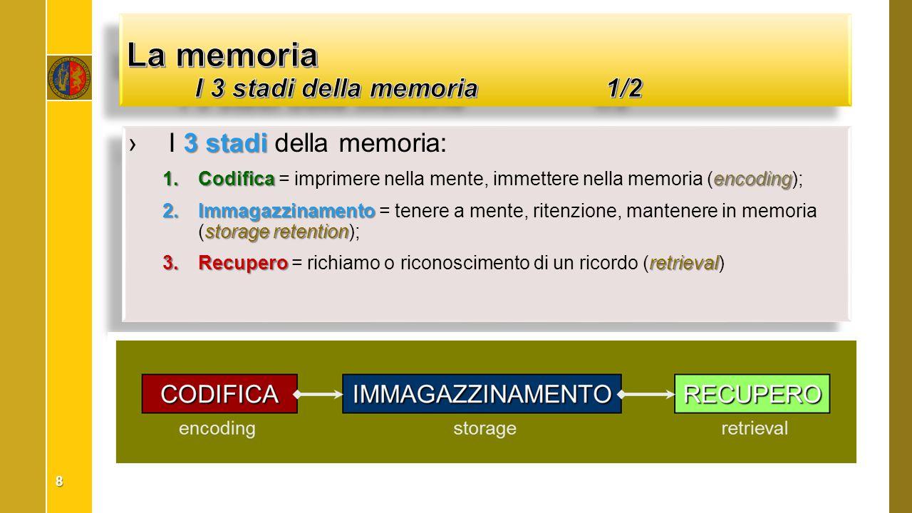 3 stadi ›I 3 stadi della memoria:  Codificaencoding  Codifica = imprimere nella mente, immettere nella memoria (encoding);  Immagazzinamento sto