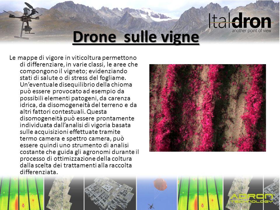Drone sulle vigne Le mappe di vigore in viticoltura permettono di differenziare, in varie classi, le aree che compongono il vigneto; evidenziando stat