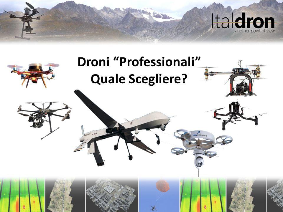 Che cosa è un drone professionale?