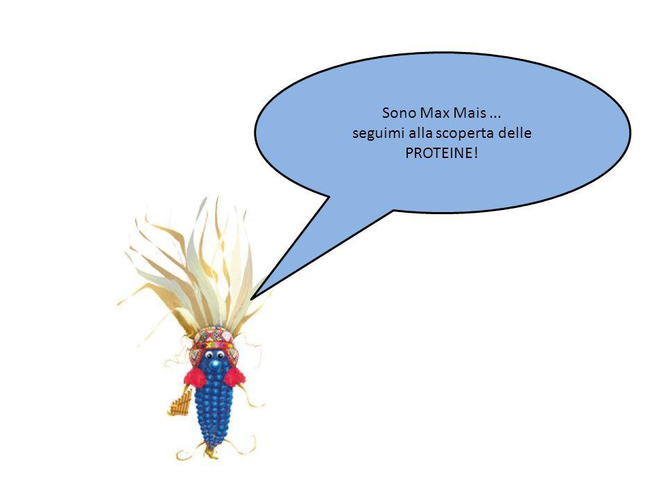 Sono Max Mais... seguimi alla scoperta delle PROTEINE!