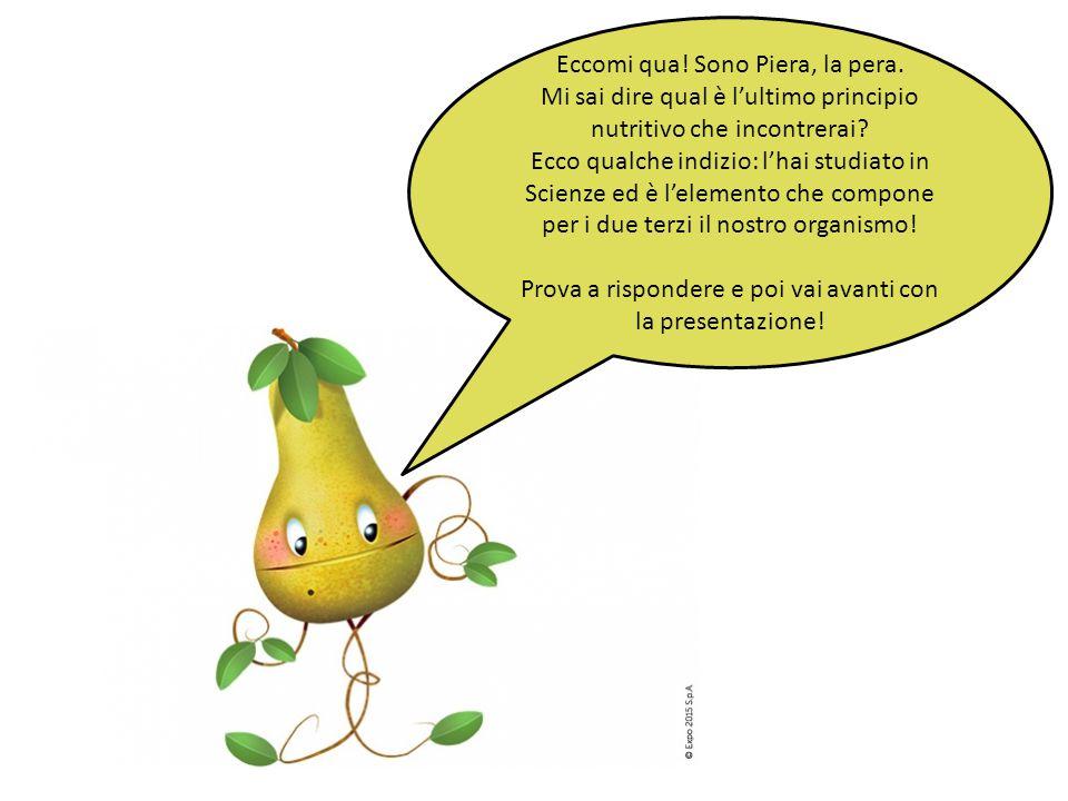 Eccomi qua! Sono Piera, la pera. Mi sai dire qual è l'ultimo principio nutritivo che incontrerai? Ecco qualche indizio: l'hai studiato in Scienze ed è