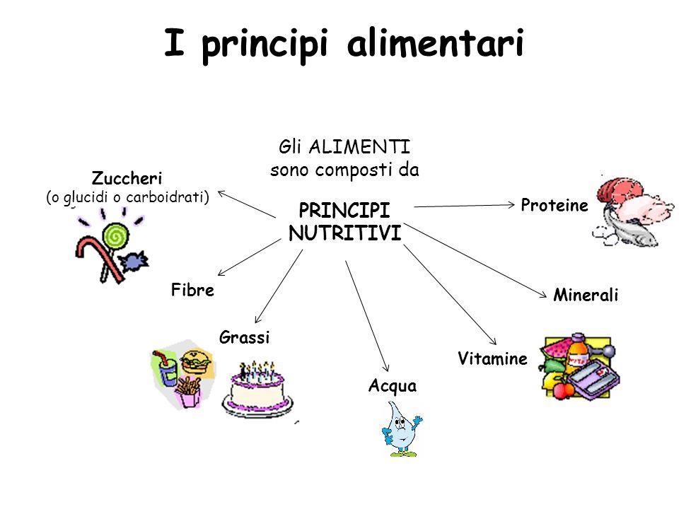 I principi alimentari Gli ALIMENTI sono composti da PRINCIPI NUTRITIVI Zuccheri (o glucidi o carboidrati) Fibre Grassi Acqua Minerali Vitamine Protein