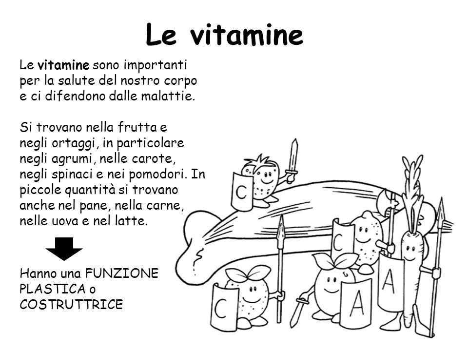 Le vitamine sono importanti per la salute del nostro corpo e ci difendono dalle malattie. Si trovano nella frutta e negli ortaggi, in particolare negl