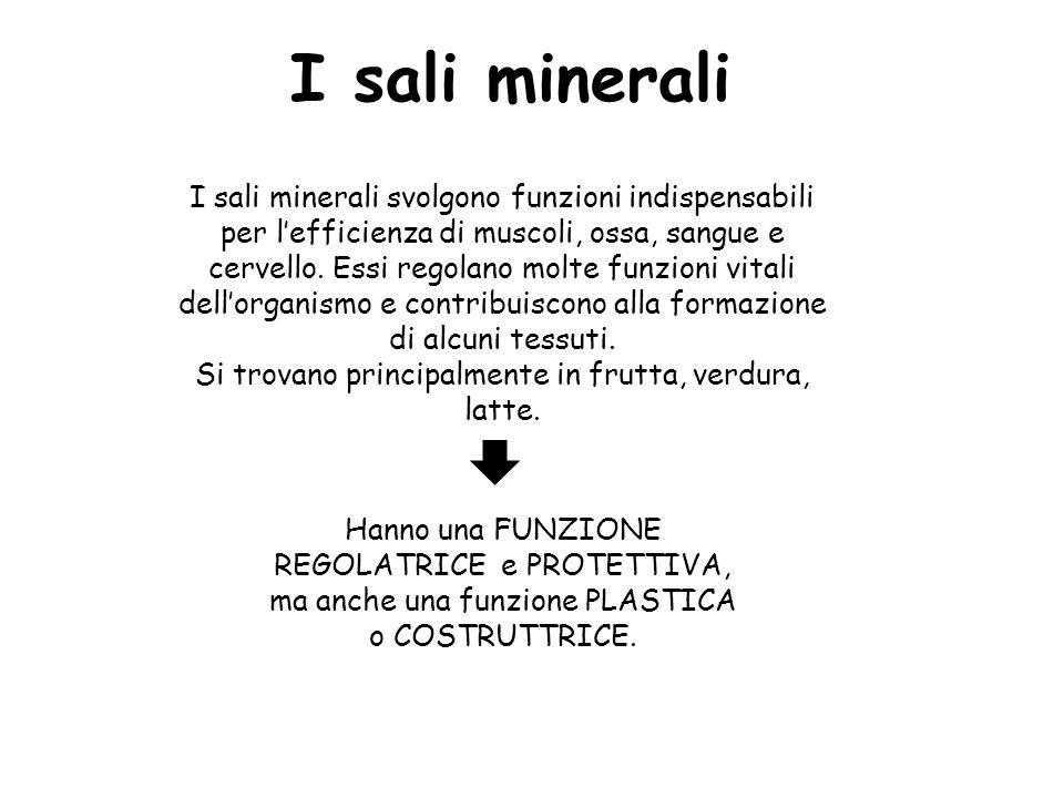 I sali minerali I sali minerali svolgono funzioni indispensabili per l'efficienza di muscoli, ossa, sangue e cervello. Essi regolano molte funzioni vi