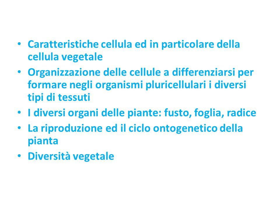 Caratteristiche cellula ed in particolare della cellula vegetale Organizzazione delle cellule a differenziarsi per formare negli organismi pluricellul