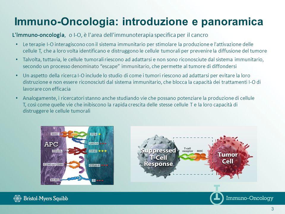 3 L'immuno-oncologia, o I-O, è l'area dell'immunoterapia specifica per il cancro Le terapie I-O interagiscono con il sistema immunitario per stimolare