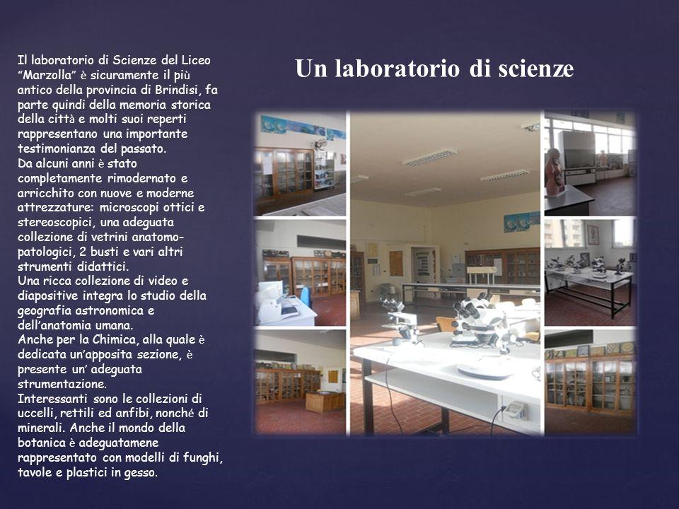 Il laboratorio di Scienze del Liceo Marzolla è sicuramente il pi ù antico della provincia di Brindisi, fa parte quindi della memoria storica della citt à e molti suoi reperti rappresentano una importante testimonianza del passato.