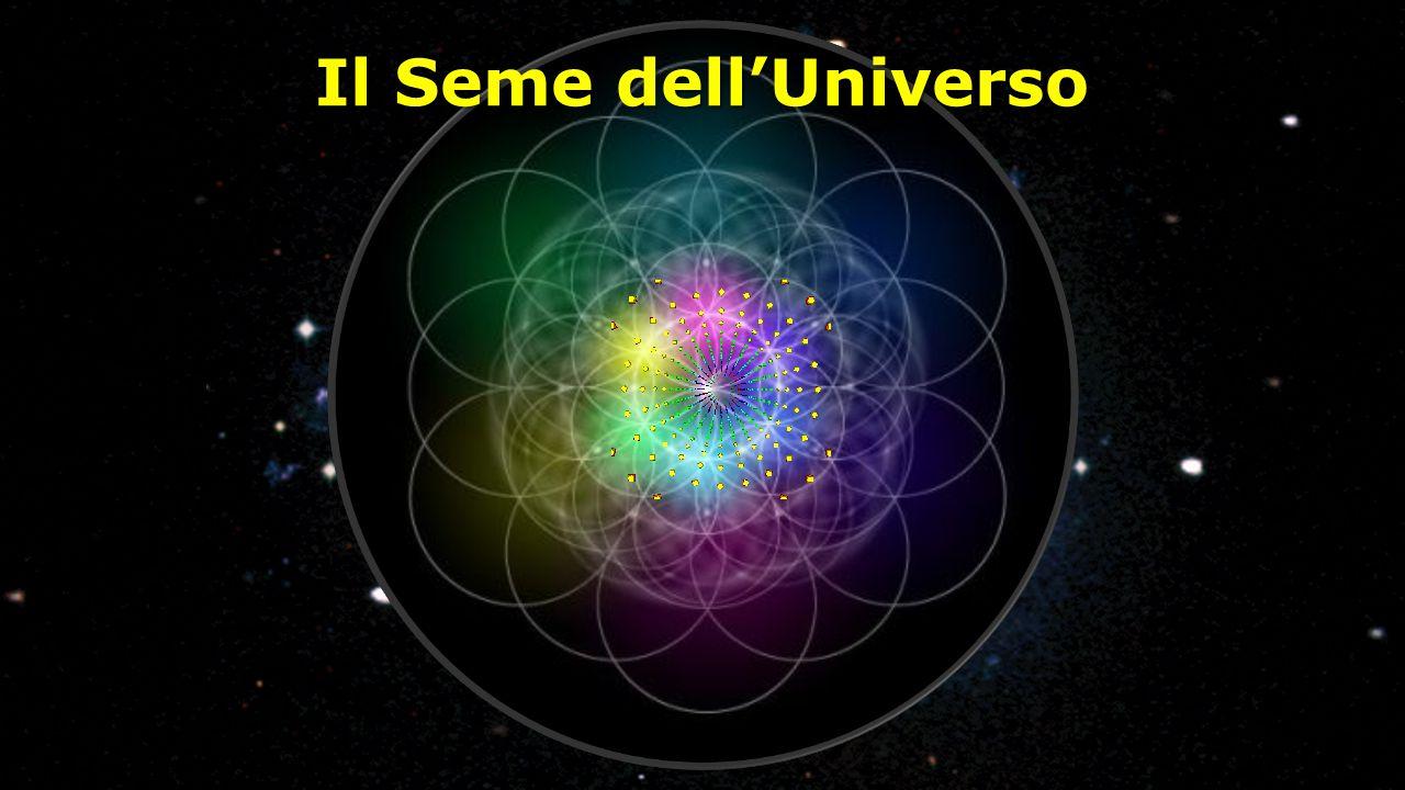Il Seme dell'Universo