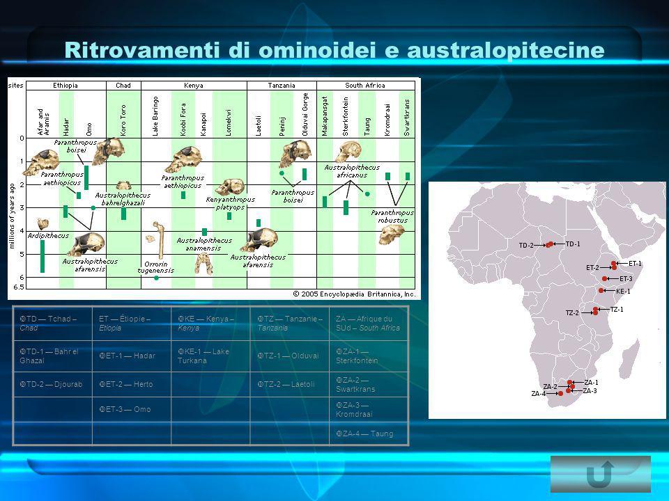 Ritrovamenti di ominoidei e australopitecine  TD — Tchad – Chad ET — Étiopie – Etiopia  KE — Kenya – Kenya  TZ — Tanzanie – Tanzania ZA — Afrique d