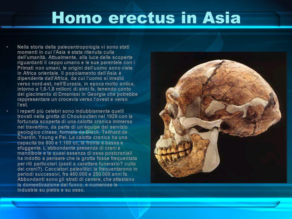 Homo erectus in Asia Nella storia della paleoantropologia vi sono stati momenti in cui l'Asia è stata ritenuta culla dell'umanità. Attualmente, alla l