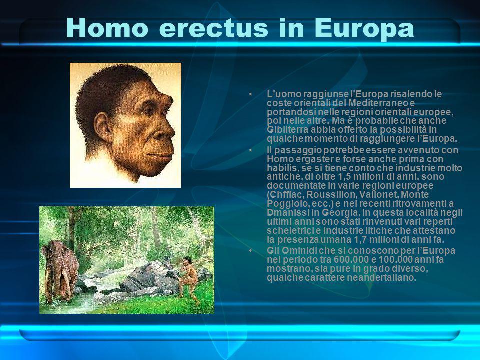 Homo erectus in Europa L'uomo raggiunse l'Europa risalendo le coste orientali del Mediterraneo e portandosi nelle regioni orientali europee, poi nelle