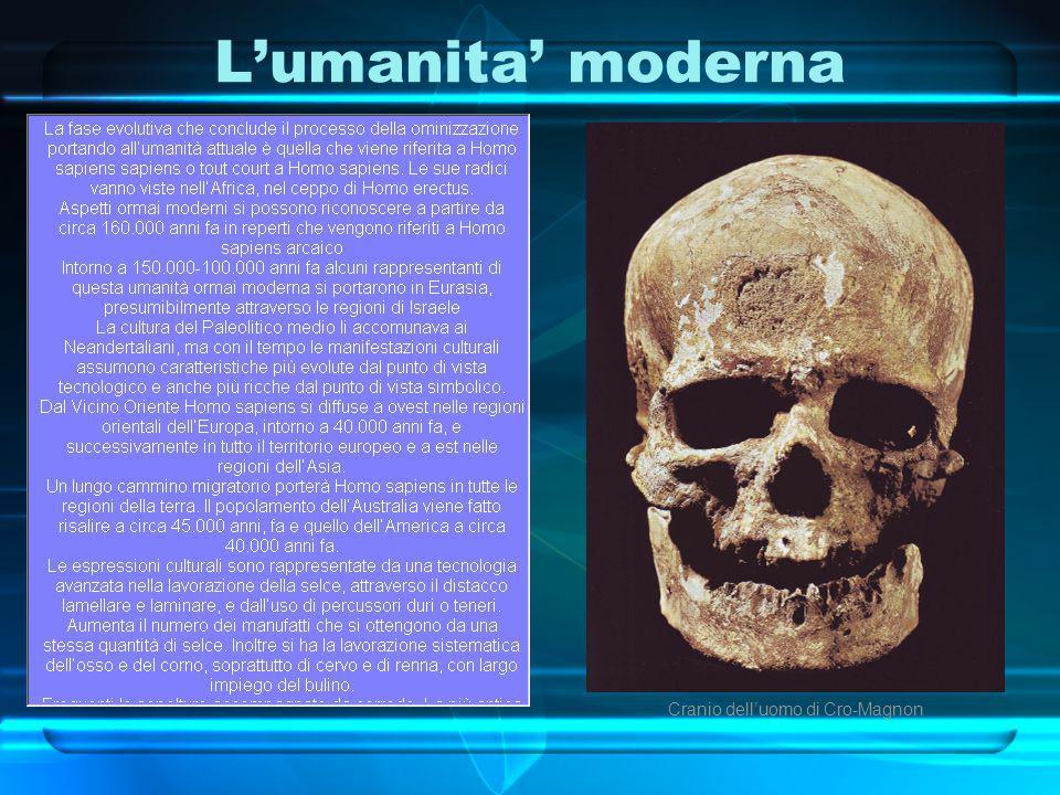 L'umanita' moderna Cranio dell'uomo di Cro-Magnon