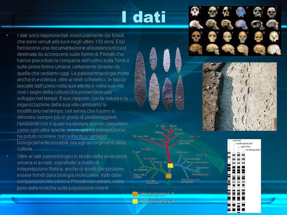 I dati I dati sono rappresentati essenzialmente dai fossili che sono venuti alla luce negli ultimi 150 anni. Essi forniscono una documentazione abbast