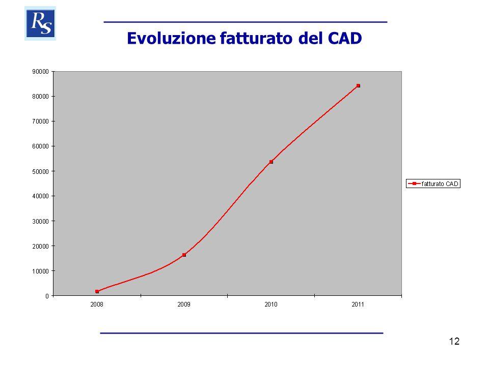 12 Evoluzione fatturato del CAD