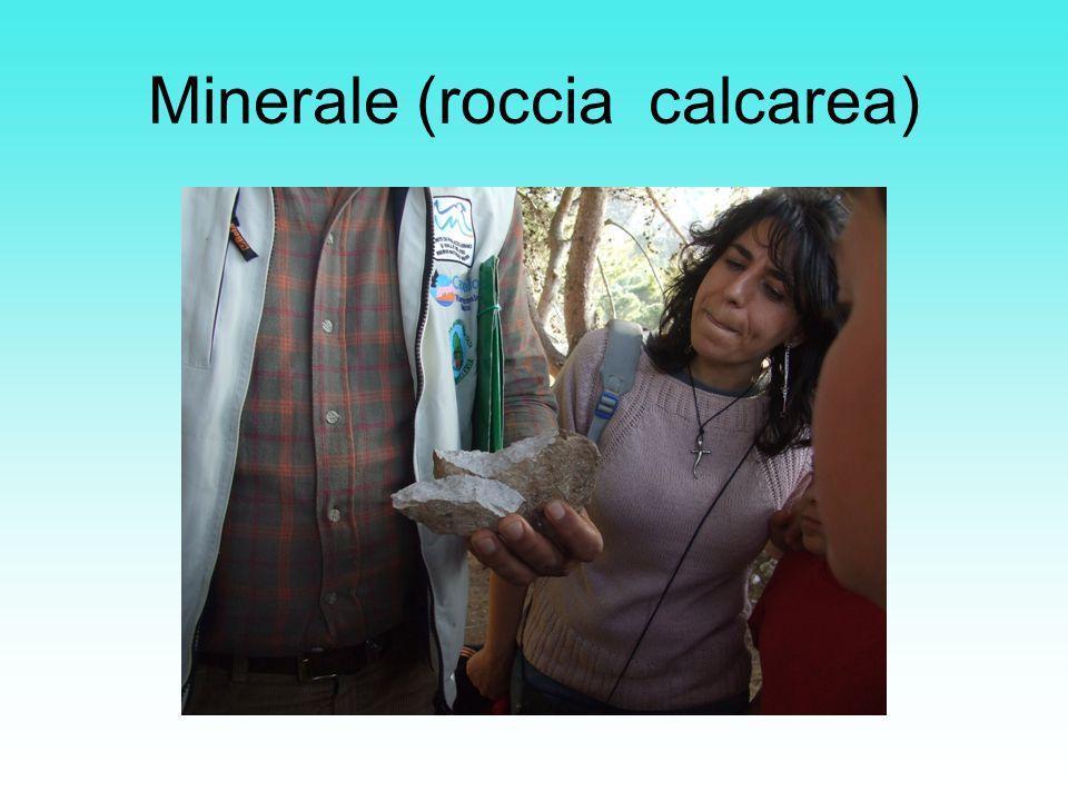 Minerale (roccia calcarea)
