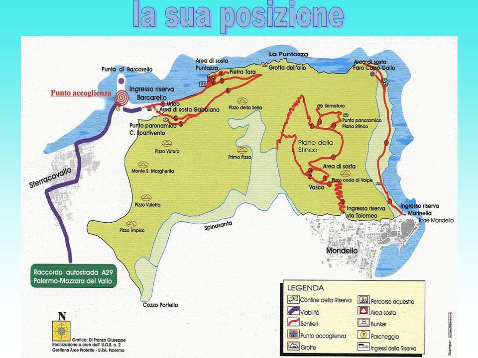 Monte Gallo è un promontorio di natura carsica che si erge a nord ovest di Palermo tra le borgate marinare di Mondello Mondello e Sferracavallo.