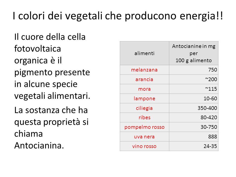 I colori dei vegetali che producono energia!! Il cuore della cella fotovoltaica organica è il pigmento presente in alcune specie vegetali alimentari.