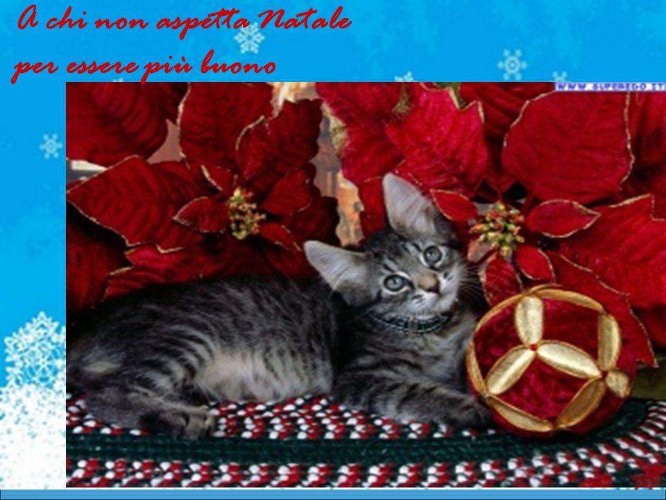 A chi non aspetta Natale per essere più buono