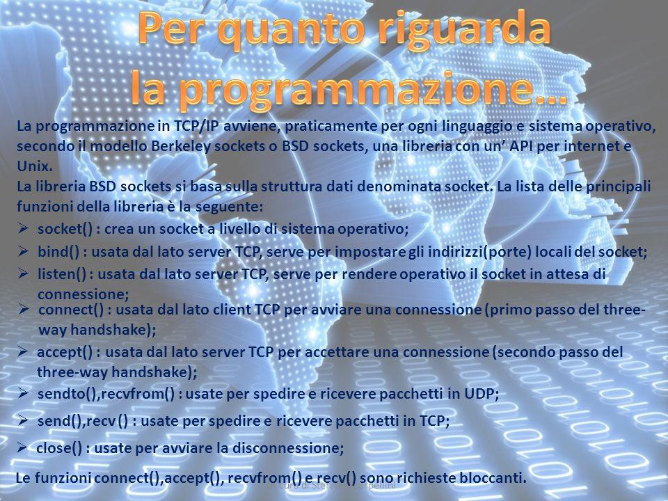 A cura di Stefano Scarpellini La programmazione in TCP/IP avviene, praticamente per ogni linguaggio e sistema operativo, secondo il modello Berkeley s