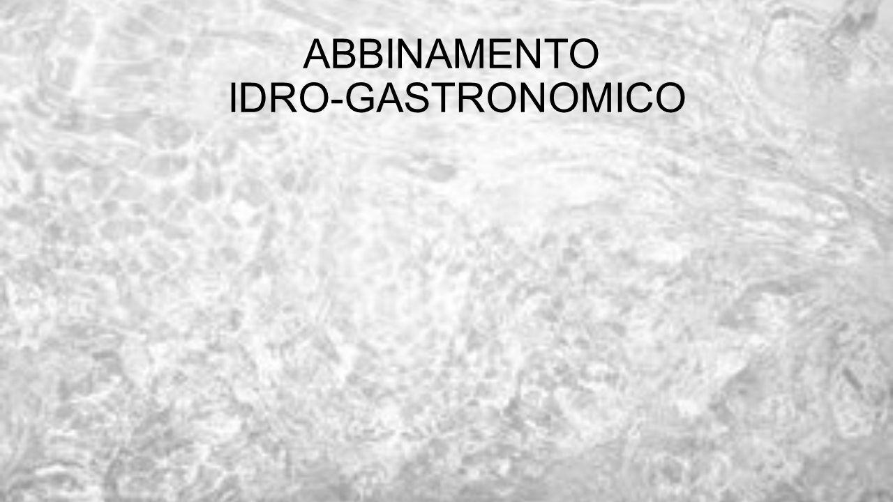 ABBINAMENTO IDRO-GASTRONOMICO