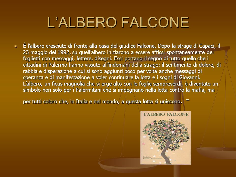 L'ALBERO FALCONE È l'albero cresciuto di fronte alla casa del giudice Falcone.