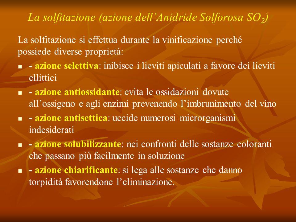 La solfitazione (azione dell'Anidride Solforosa SO 2 ) La solfitazione si effettua durante la vinificazione perché possiede diverse proprietà: - azion