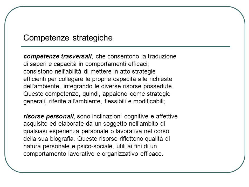 Competenze strategiche competenze trasversali, che consentono la traduzione di saperi e capacità in comportamenti efficaci; consistono nell'abilità di