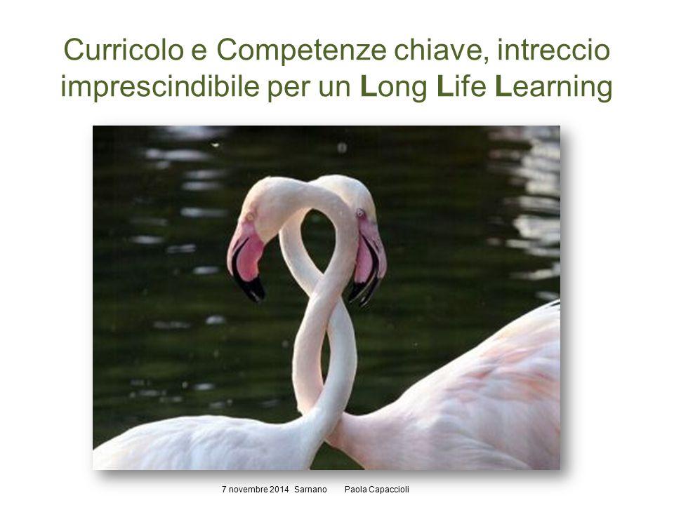 Curricolo e Competenze chiave, intreccio imprescindibile per un Long Life Learning 7 novembre 2014 Sarnano Paola Capaccioli