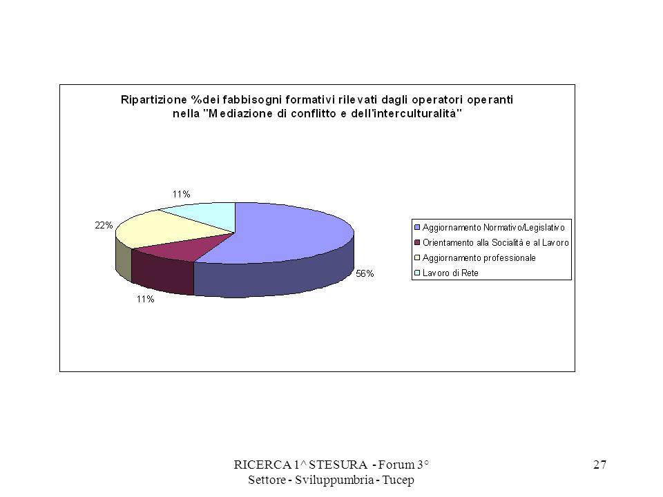 RICERCA 1^ STESURA - Forum 3° Settore - Sviluppumbria - Tucep 27