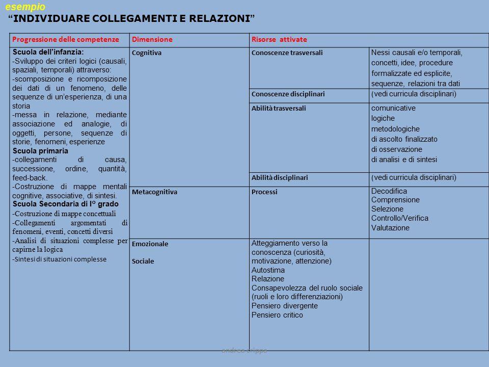 Progressione delle competenzeDimensioneRisorse attivate Scuola dell'infanzia: -Sviluppo dei criteri logici (causali, spaziali, temporali) attraverso: