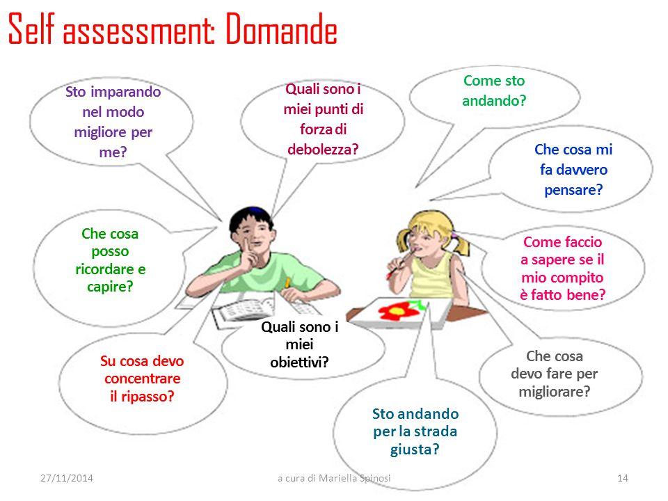 Self assessment: Domande Sto imparando nel modo migliore per me? Quali sono i miei punti di forza di debolezza? Come sto andando? Che cosa mi fa davve