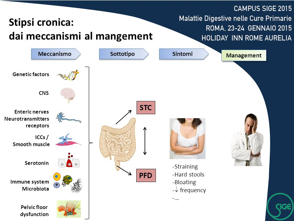 Genetic factors Pelvic floor dysfunction CNS Enteric nerves Neurotransmitters receptors Immune system Microbiota Serotonin ICCs / Smooth muscle Management STC PFD -Straining -Hard stools -Bloating -  frequency -… Stipsi cronica: dai meccanismi al mangement Meccanismo Sottotipo Sintomi