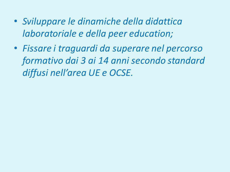 Sviluppare le dinamiche della didattica laboratoriale e della peer education; Fissare i traguardi da superare nel percorso formativo dai 3 ai 14 anni secondo standard diffusi nell'area UE e OCSE.