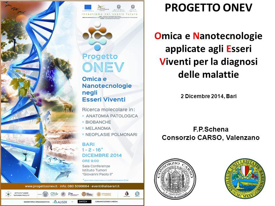 PROGETTO ONEV Omica e Nanotecnologie applicate agli Esseri Viventi per la diagnosi delle malattie F.P.Schena Consorzio CARSO, Valenzano 2 Dicembre 2014, Bari