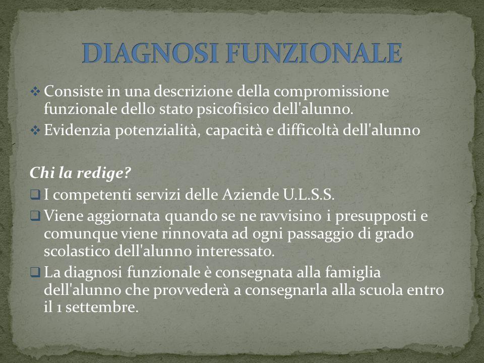  Consiste in una descrizione della compromissione funzionale dello stato psicofisico dell alunno.