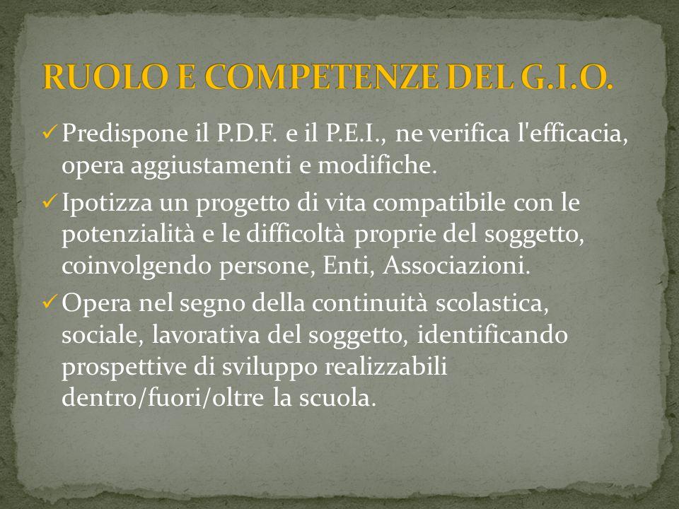 Predispone il P.D.F.e il P.E.I., ne verifica l efficacia, opera aggiustamenti e modifiche.