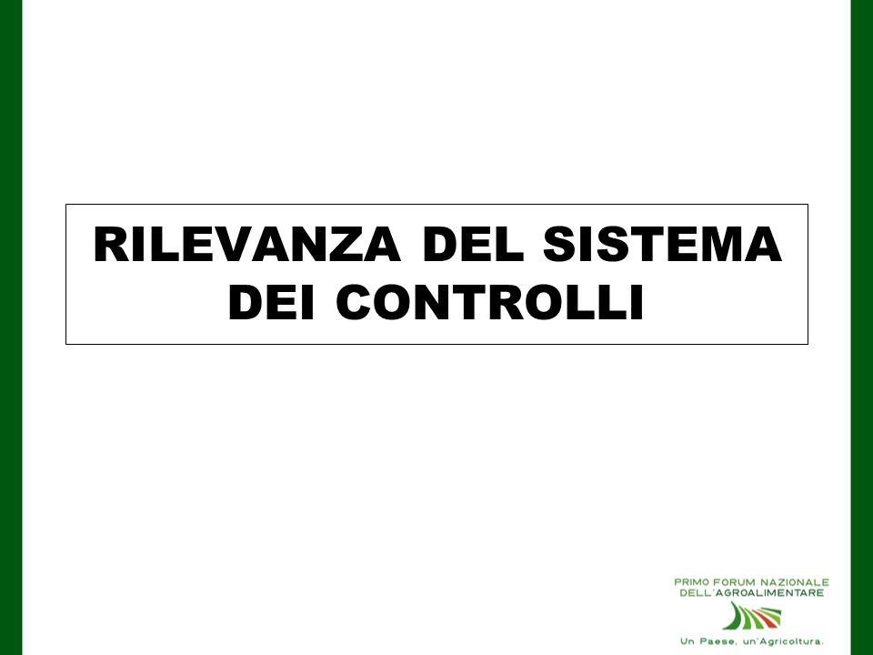 RILEVANZA DEL SISTEMA DEI CONTROLLI