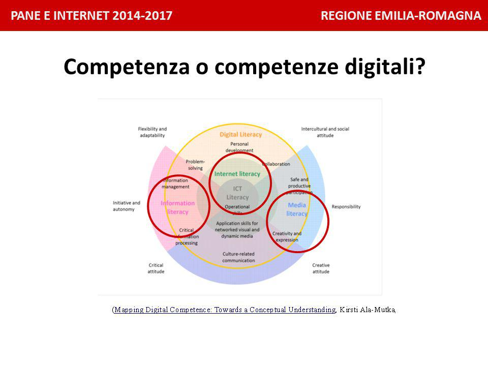 PANE E INTERNET 2014-2017 REGIONE EMILIA-ROMAGNA Competenza o competenze digitali