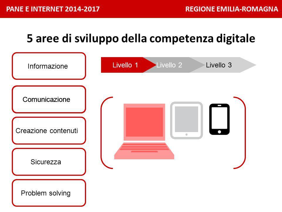 PANE E INTERNET 2014-2017 REGIONE EMILIA-ROMAGNA Informazione 5 aree di sviluppo della competenza digitale Comunicazione Problem solving Creazione contenuti Sicurezza Livello 3Livello 2Livello 1 Comunicazione