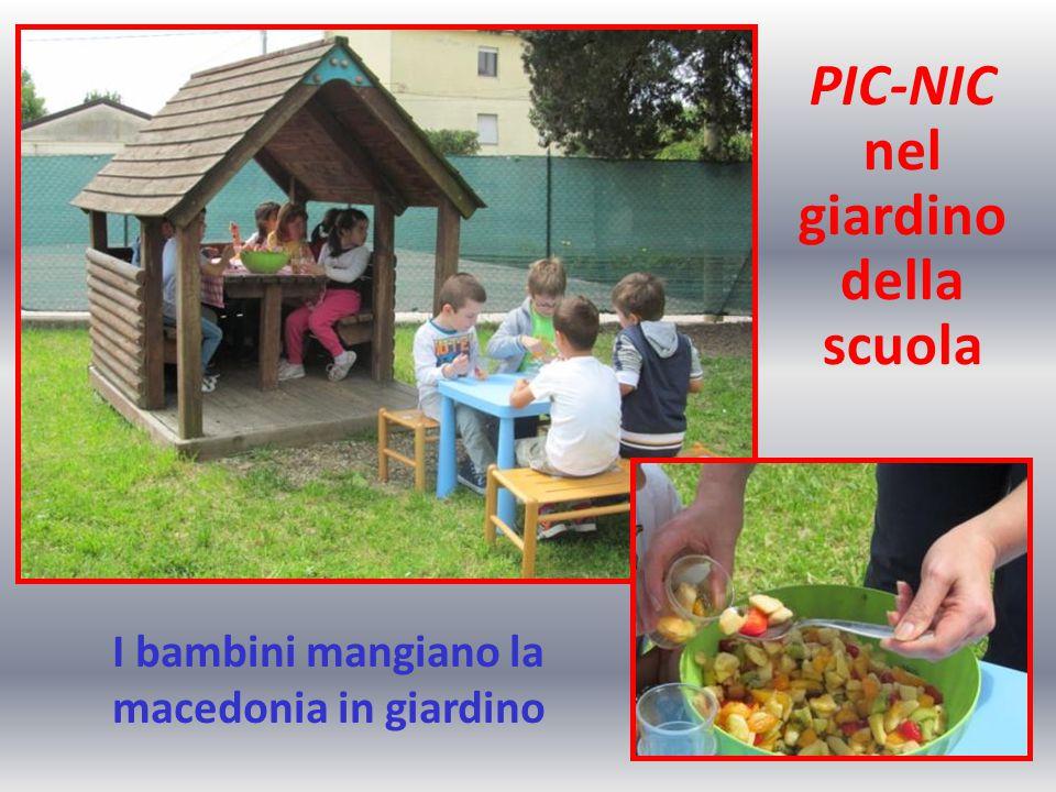 I bambini mangiano la macedonia in giardino PIC-NIC nel giardino della scuola