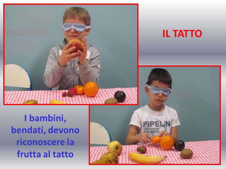IL TATTO I bambini, bendati, devono riconoscere la frutta al tatto