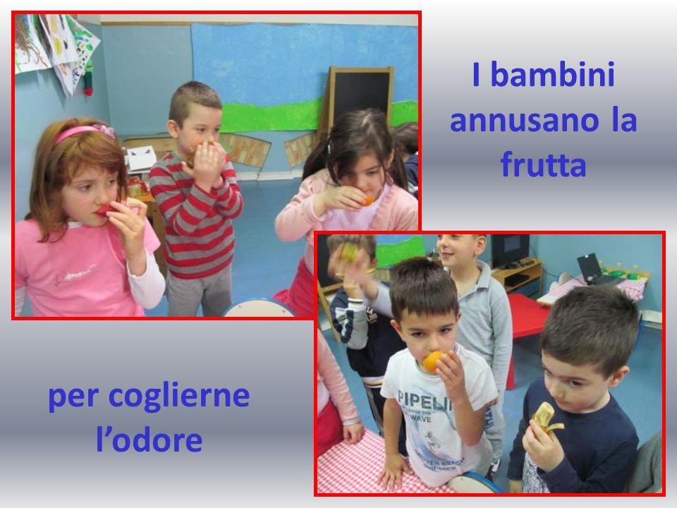 I bambini annusano la frutta per coglierne l'odore