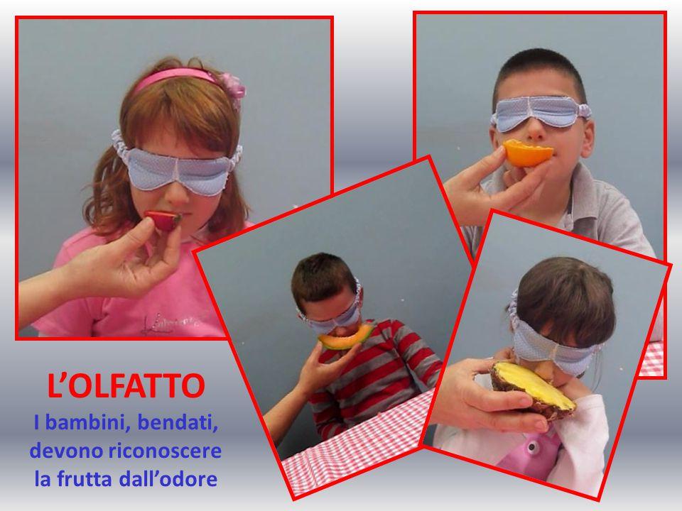 L'OLFATTO I bambini, bendati, devono riconoscere la frutta dall'odore
