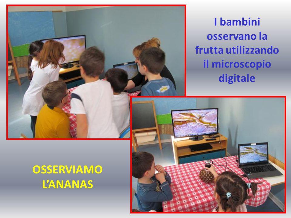 I bambini osservano la frutta utilizzando il microscopio digitale OSSERVIAMO L'ANANAS