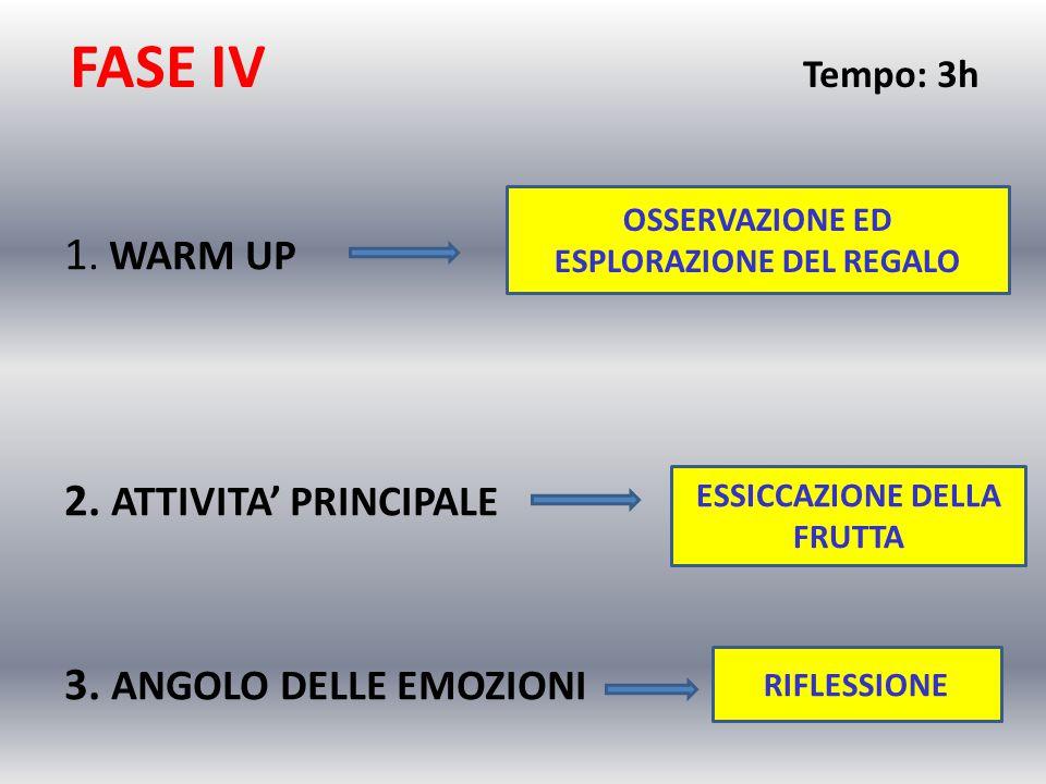 FASE IV Tempo: 3h 1. WARM UP 2. ATTIVITA' PRINCIPALE 3. ANGOLO DELLE EMOZIONI OSSERVAZIONE ED ESPLORAZIONE DEL REGALO ESSICCAZIONE DELLA FRUTTA RIFLES