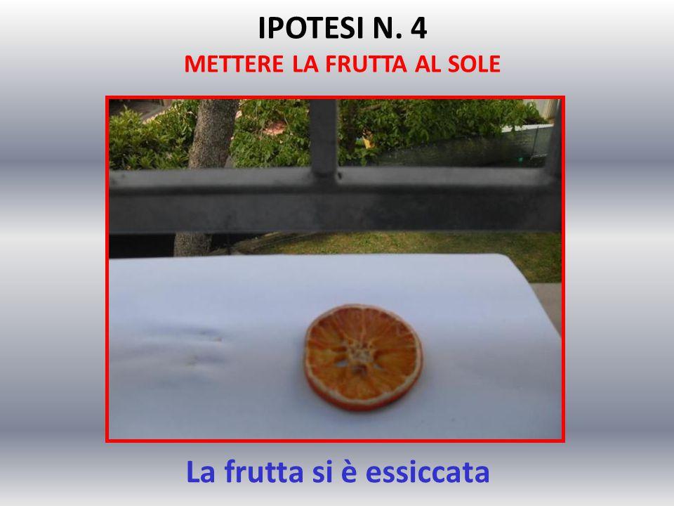 La frutta si è essiccata IPOTESI N. 4 METTERE LA FRUTTA AL SOLE