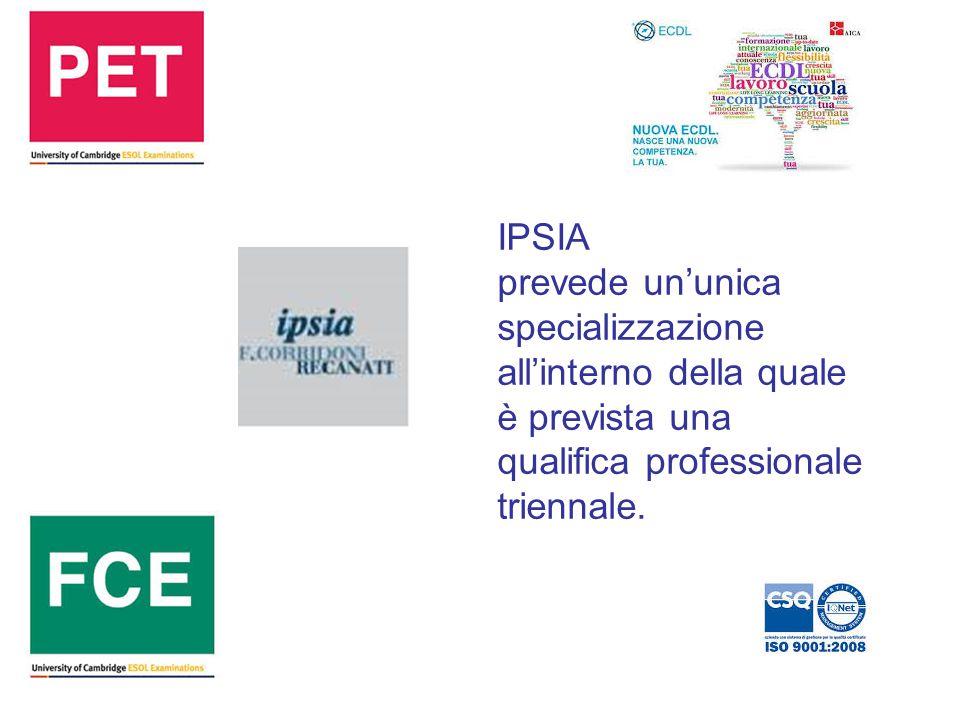 IPSIA prevede un'unica specializzazione all'interno della quale è prevista una qualifica professionale triennale.