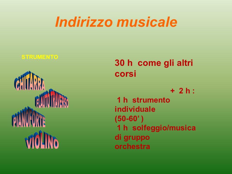 Indirizzo musicale 30 h come gli altri corsi + 2 h : 1 h strumento individuale (50-60' ) 1 h solfeggio/musica di gruppo orchestra STRUMENTO