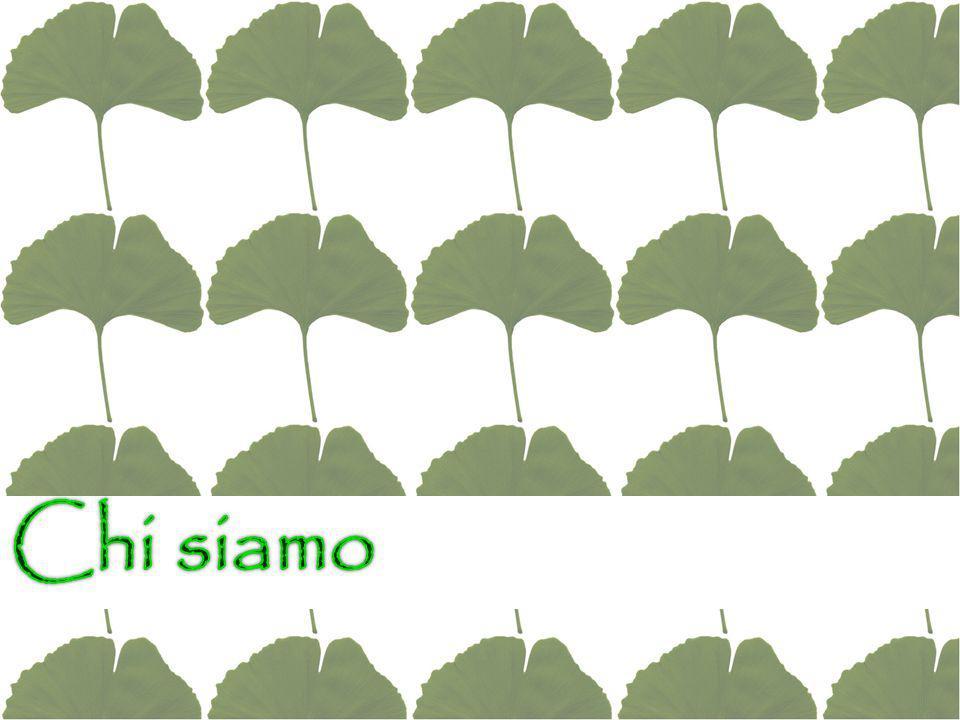 L'ISTITUTO COMPRENSIVO GUIDO GALLI nasce nel 2013 e si compone di Bonetti Pascoli Nolli Arquati Toti La direzione didattica e gli uffici amministrativi sono collocati presso la sede centrale di viale Romagna.