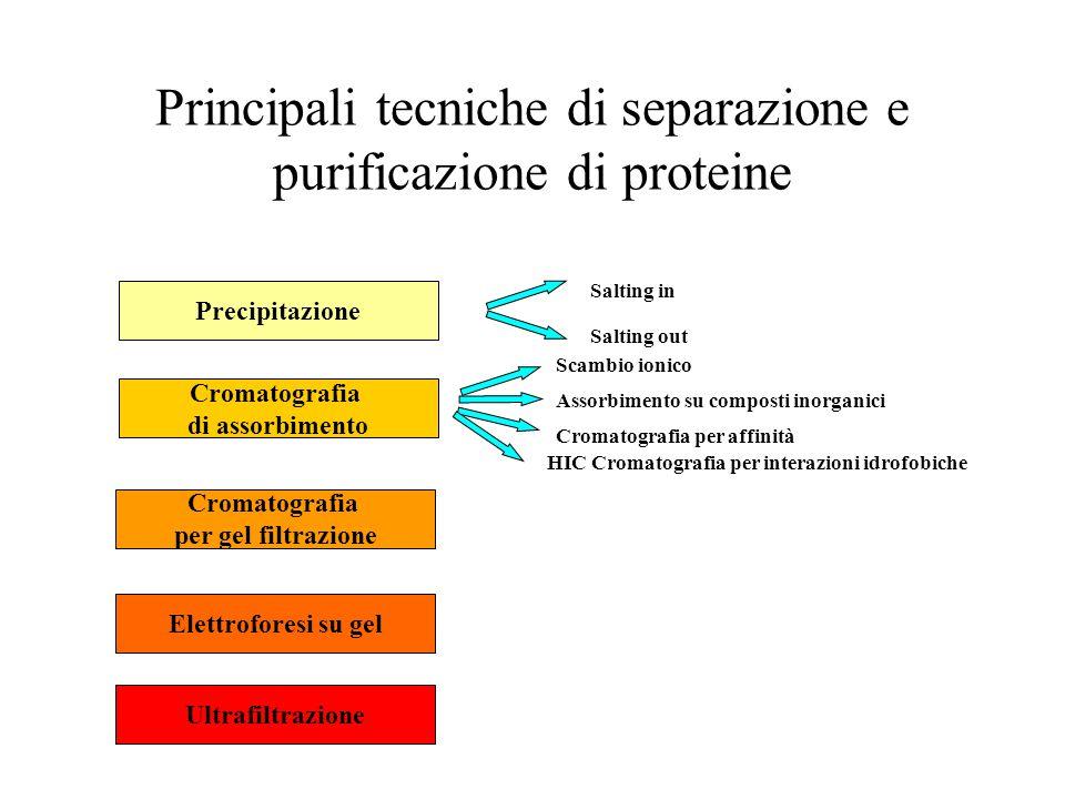 Precipitazione frazionata proteina precipitata % % sat.
